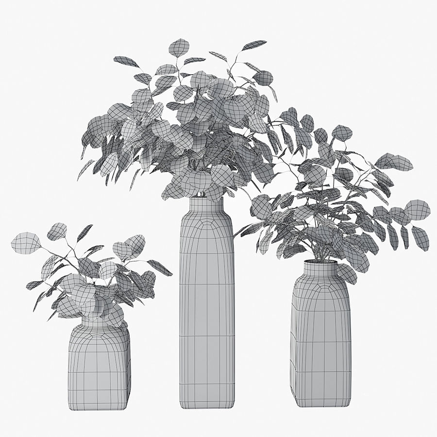 Eucalyptus 05 royalty-free 3d model - Preview no. 4