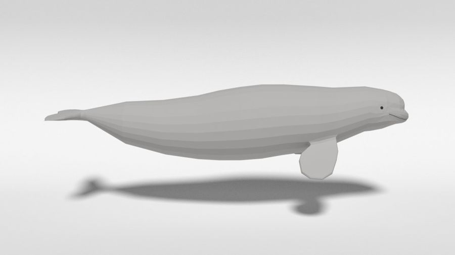 Low Poly Cartoon Beluga Whale royalty-free 3d model - Preview no. 6