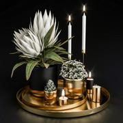Dekoratives Set mit Pflanzen in Töpfen 3d model
