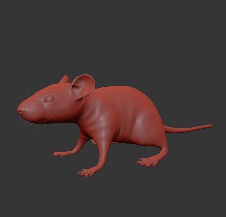 Животная крыса мышь royalty-free 3d model - Preview no. 18