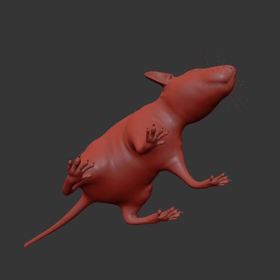 Животная крыса мышь royalty-free 3d model - Preview no. 17