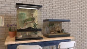 파충류 장식 3d model