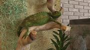 Reptiles Decoration 3d model