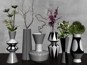 Коллекция растений с двумя вазами 3d model