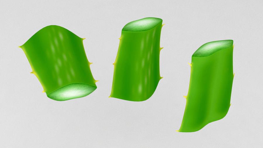Aloe Vera Pflanze royalty-free 3d model - Preview no. 6