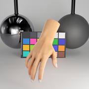 Женская рука 37 3d model
