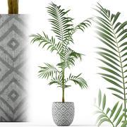 Plants collection 215 3d model