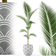 Plants collection 217 3d model