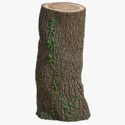 Ствол дерева 03 3d model