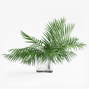 Folhas tropicais 3d model
