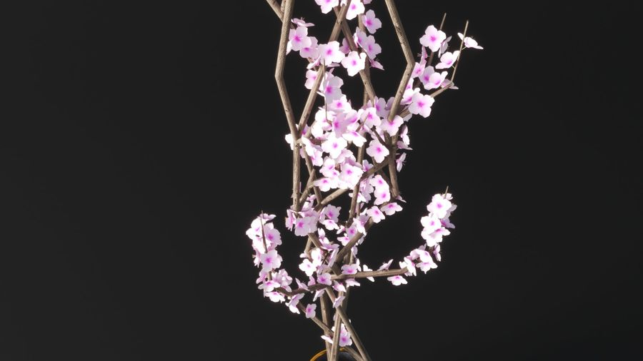 Blossom Vase royalty-free 3d model - Preview no. 3