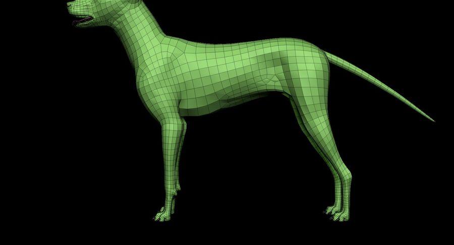 Köpek Tabanı royalty-free 3d model - Preview no. 11