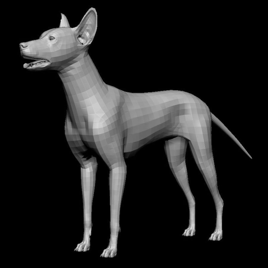 Köpek Tabanı royalty-free 3d model - Preview no. 1