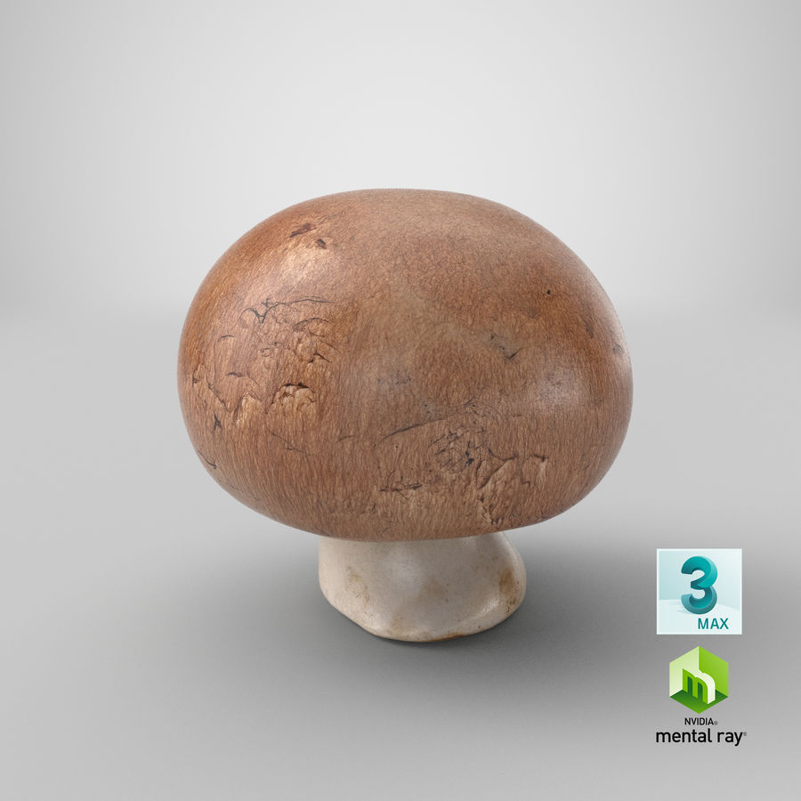 Crimino-Pilz 03 royalty-free 3d model - Preview no. 23