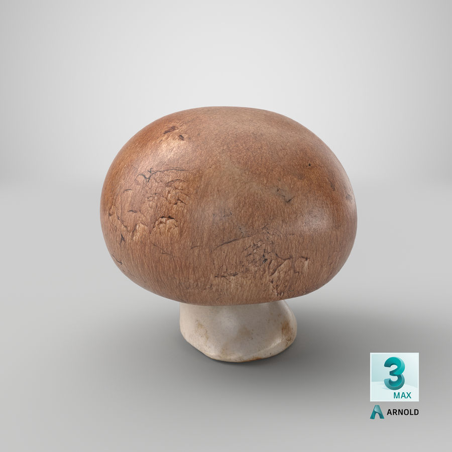 Crimino-Pilz 03 royalty-free 3d model - Preview no. 22