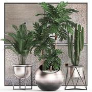 室内花盆装饰植物470 3d model