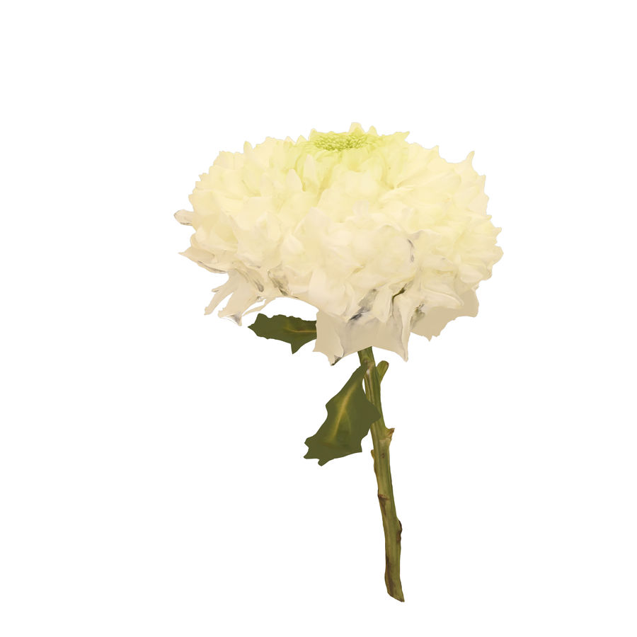 Fw24 - Yellow Flower royalty-free 3d model - Preview no. 2