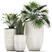 室内花盆装饰植物473 3d model