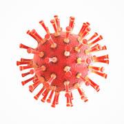 Coronavirus COVID 19 3d model