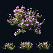 Plant Flower set 01 3d model