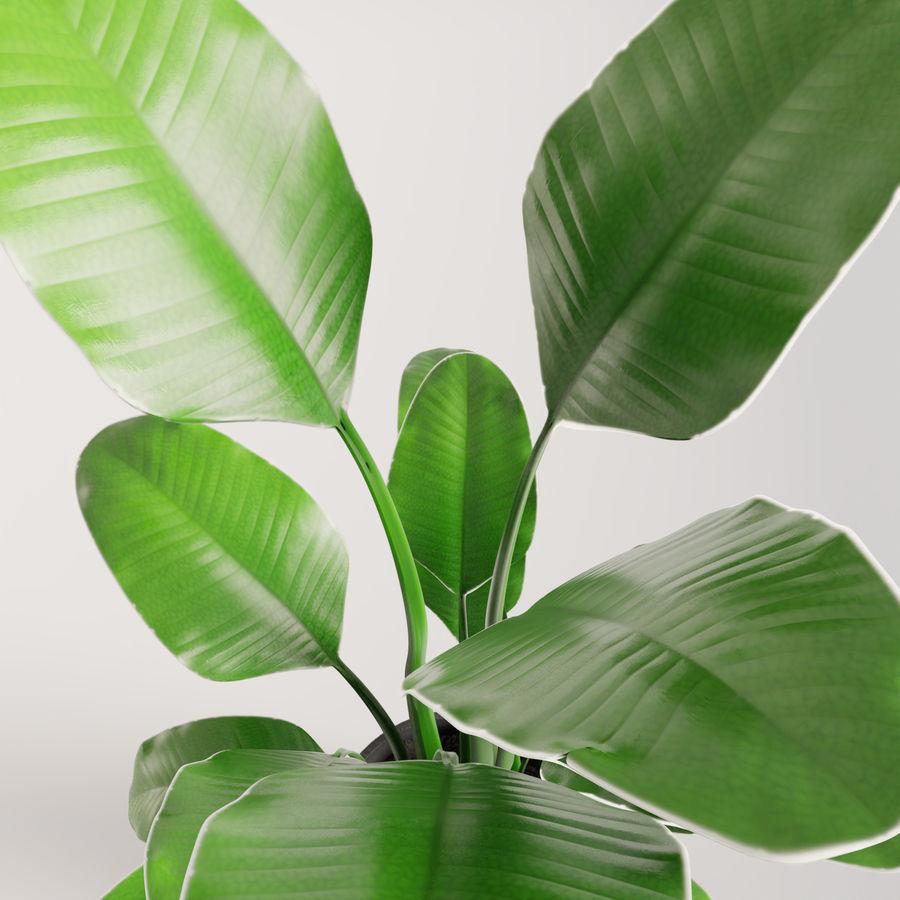 Plante en pot verte royalty-free 3d model - Preview no. 13