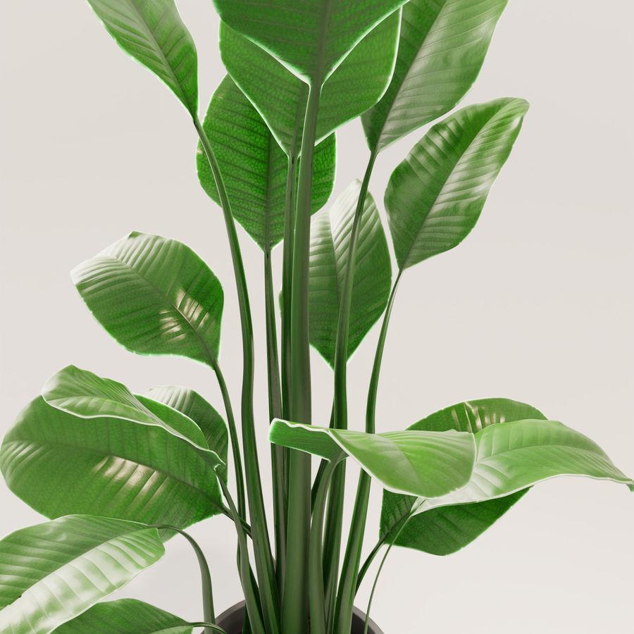 Plante en pot verte royalty-free 3d model - Preview no. 10