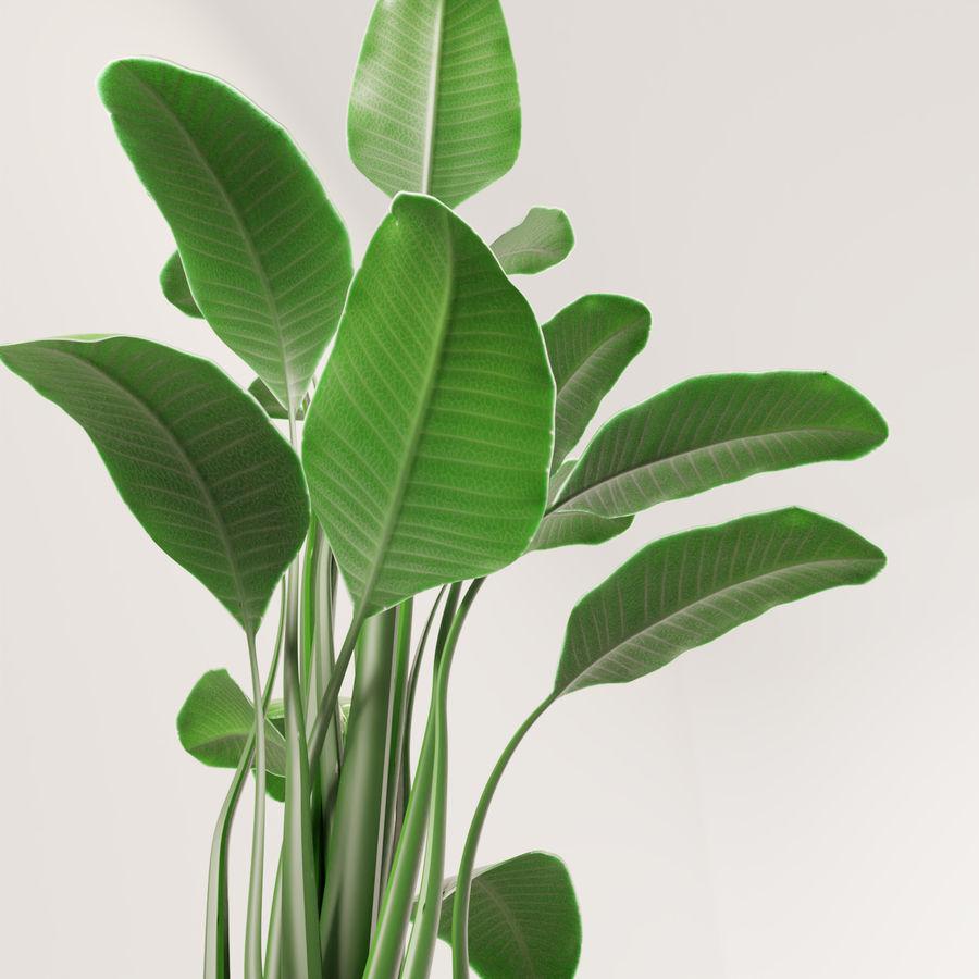 Plante en pot verte royalty-free 3d model - Preview no. 6