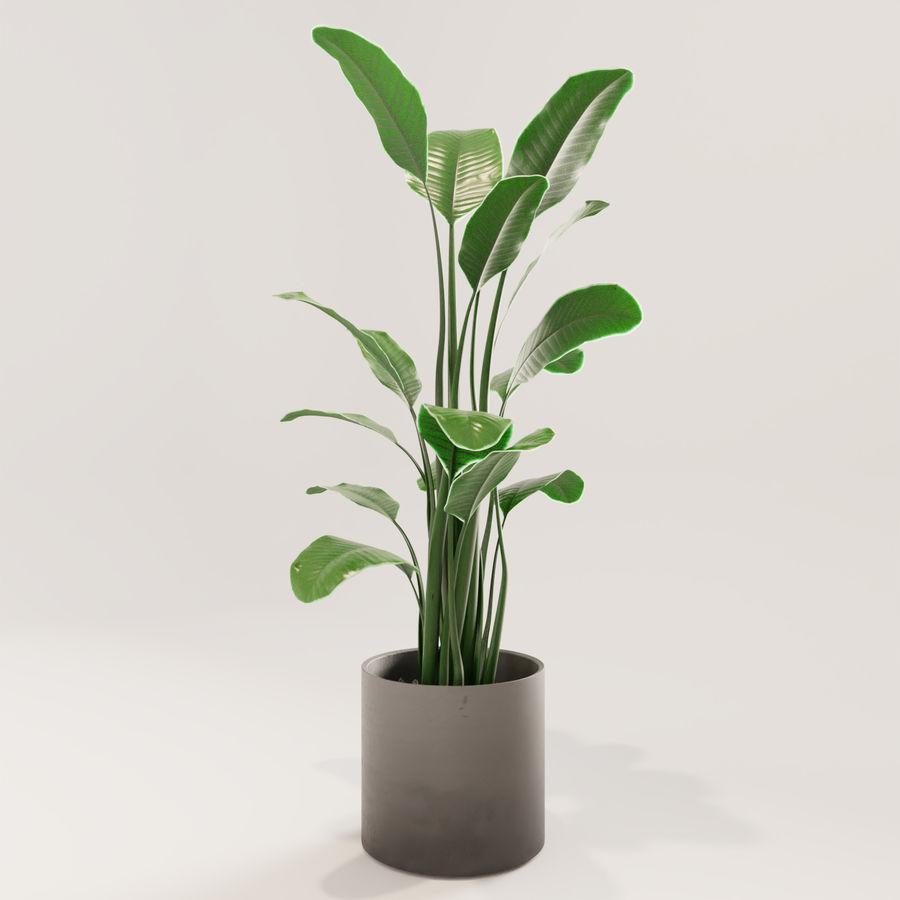 Plante en pot verte royalty-free 3d model - Preview no. 3