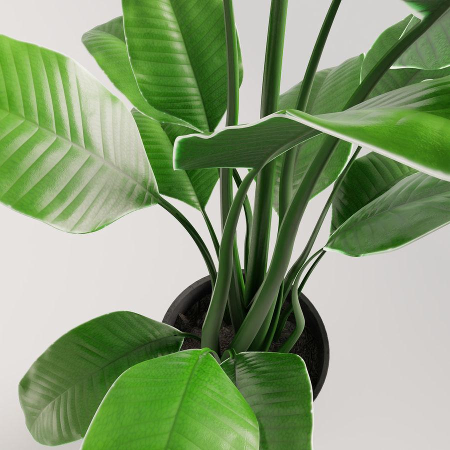 Plante en pot verte royalty-free 3d model - Preview no. 14