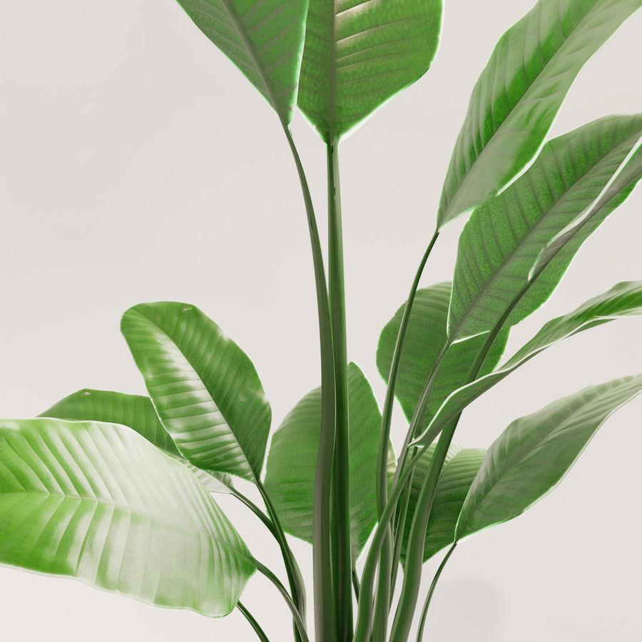 Plante en pot verte royalty-free 3d model - Preview no. 12