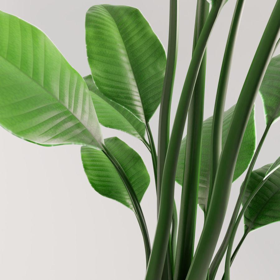 Plante en pot verte royalty-free 3d model - Preview no. 16