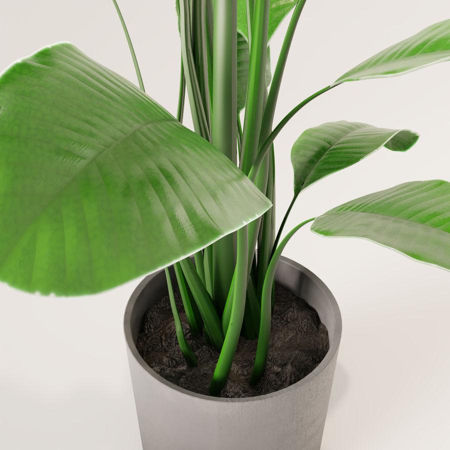 Plante en pot verte royalty-free 3d model - Preview no. 8