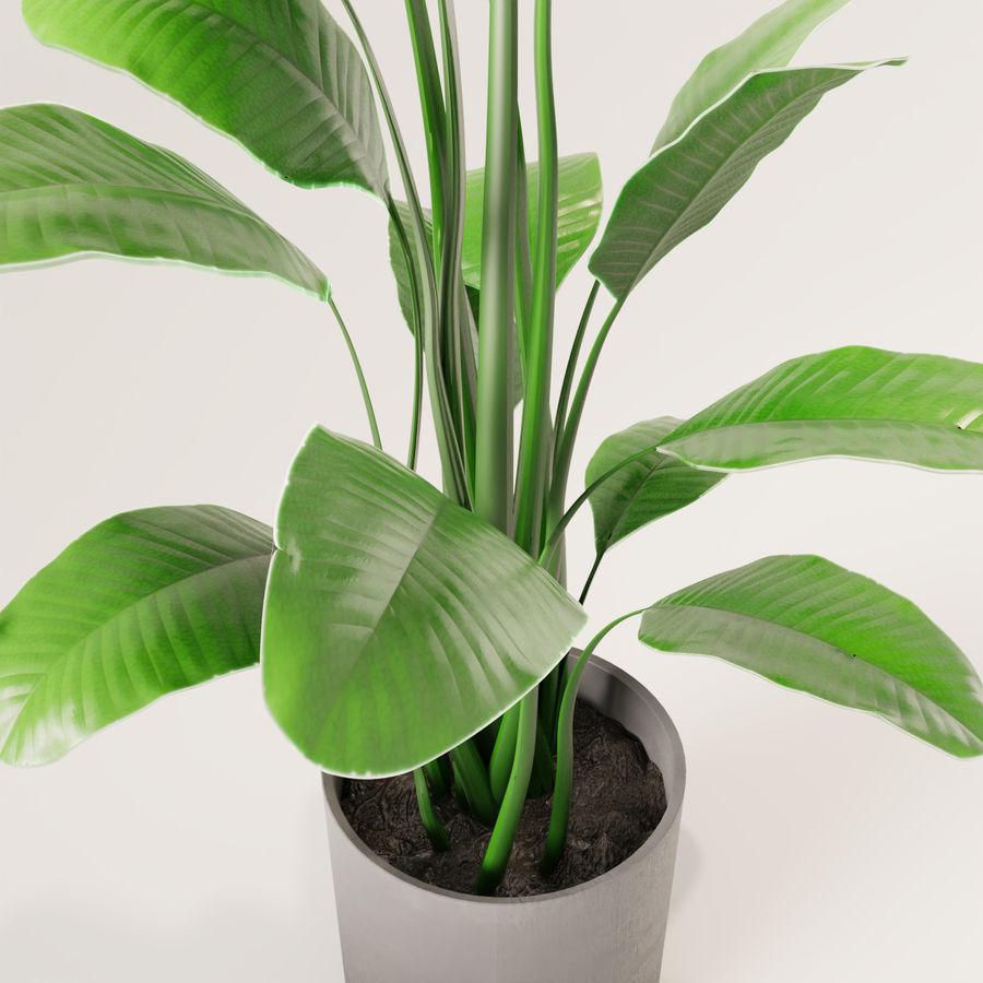 Plante en pot verte royalty-free 3d model - Preview no. 7