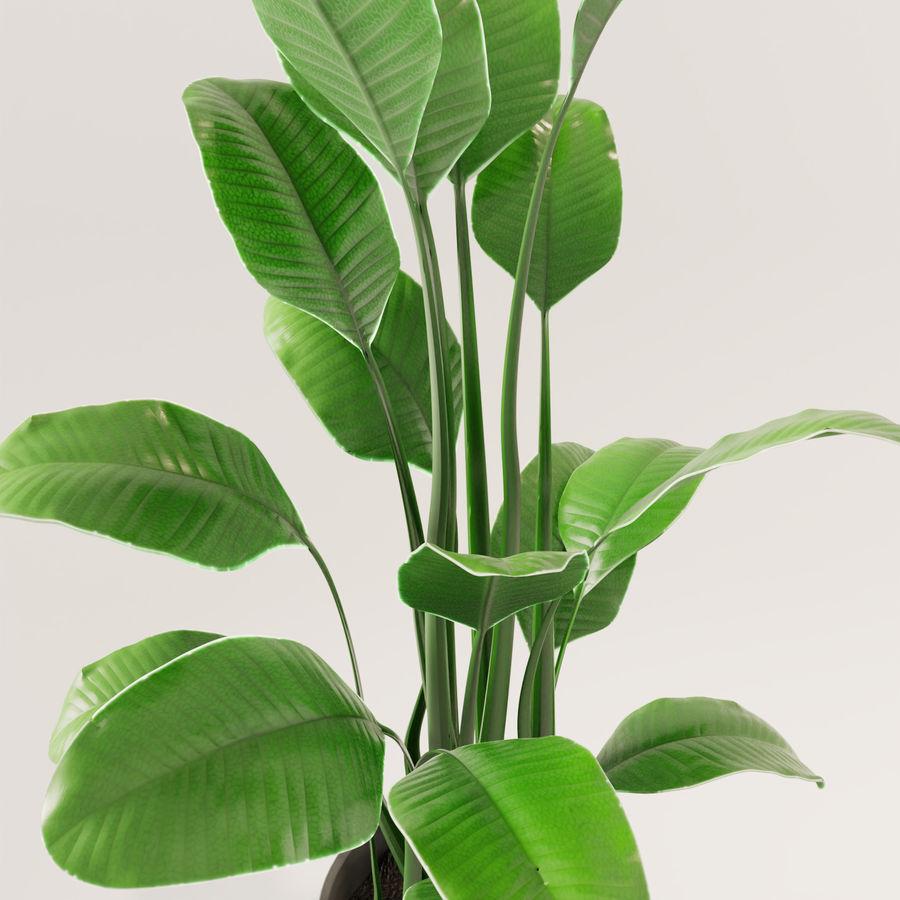 Plante en pot verte royalty-free 3d model - Preview no. 9