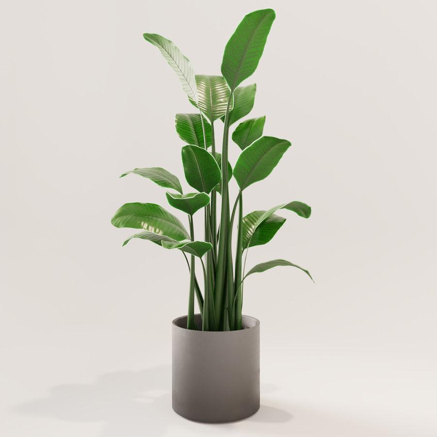 Plante en pot verte royalty-free 3d model - Preview no. 2