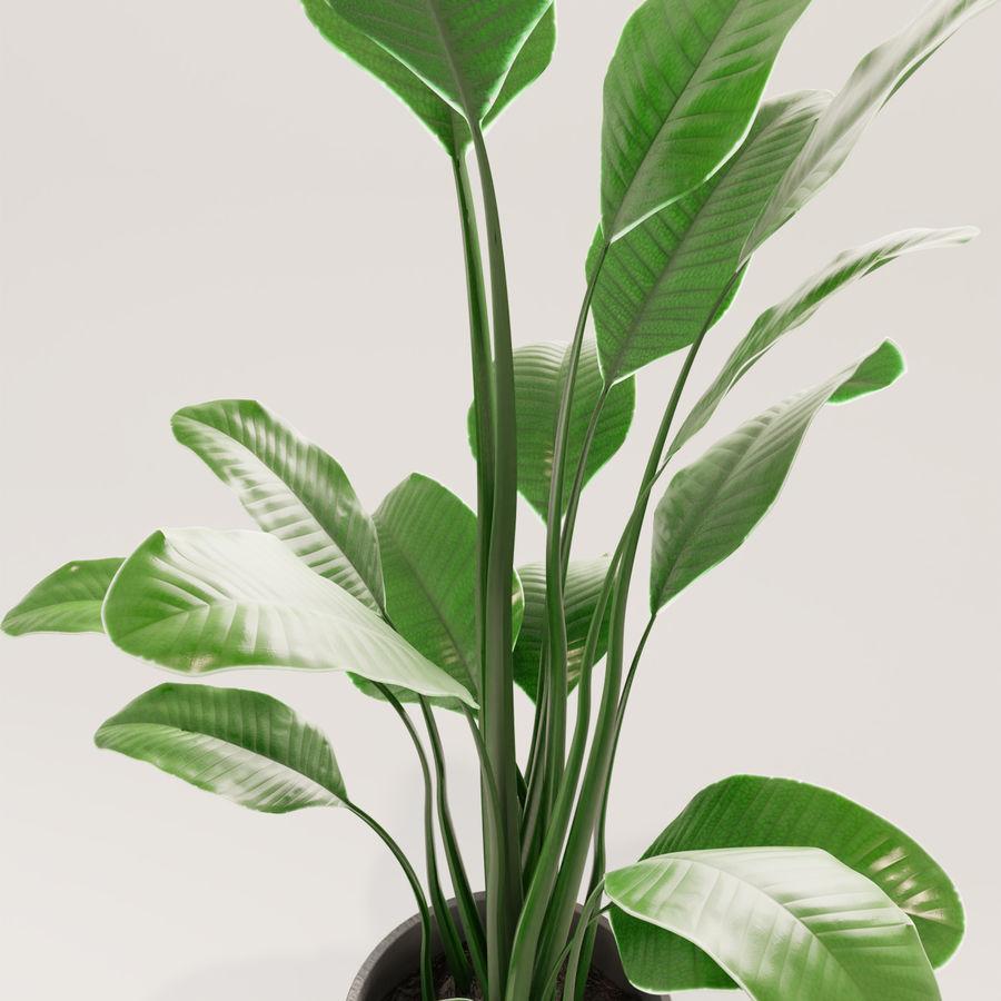 Plante en pot verte royalty-free 3d model - Preview no. 11