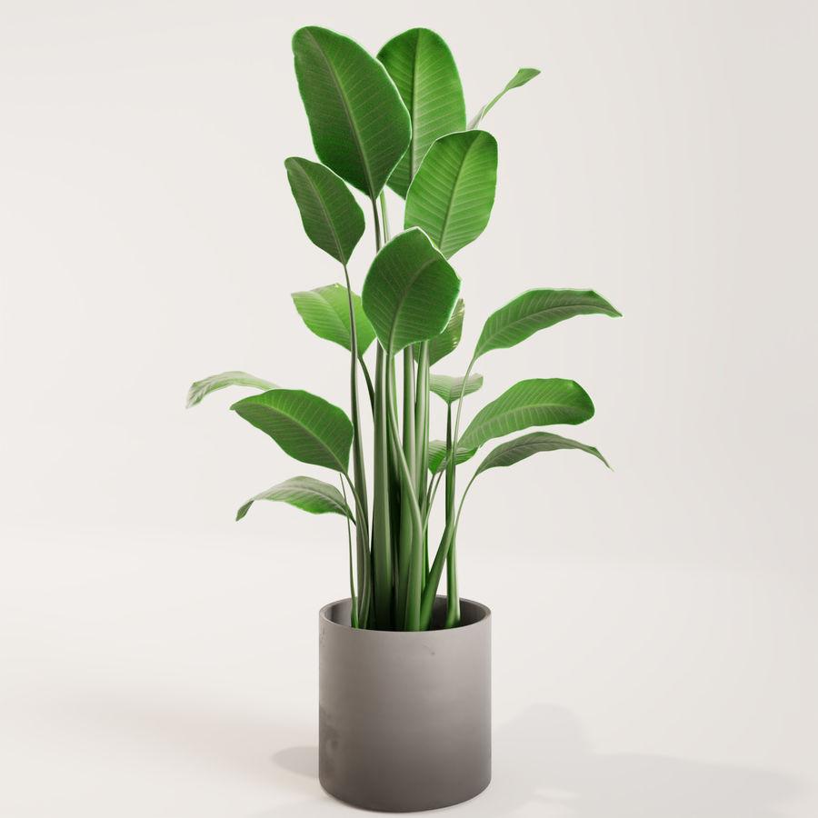 Plante en pot verte royalty-free 3d model - Preview no. 4