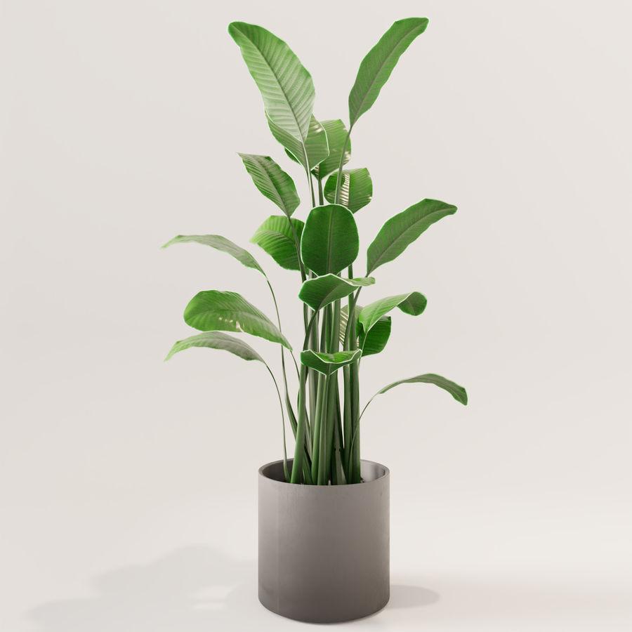 Plante en pot verte royalty-free 3d model - Preview no. 1