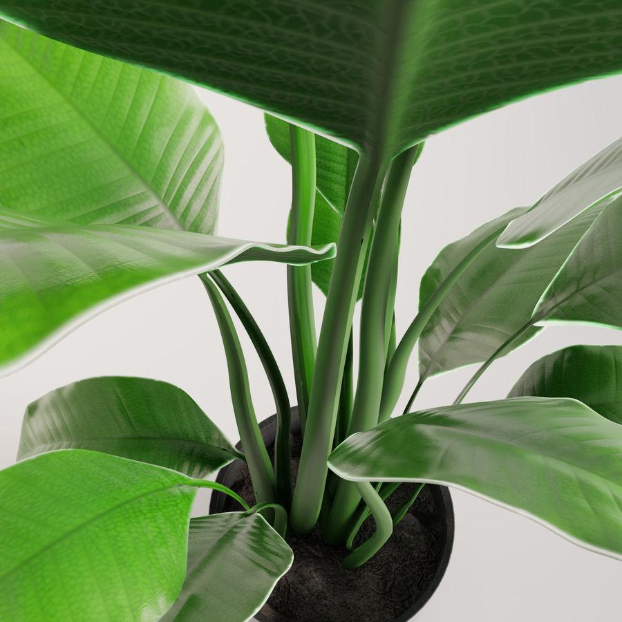 Plante en pot verte royalty-free 3d model - Preview no. 15