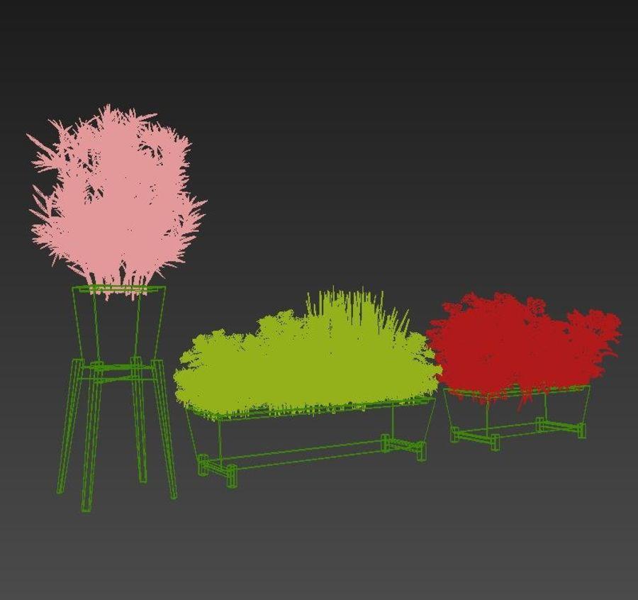 Plantes aux herbes épicées royalty-free 3d model - Preview no. 4