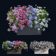 Plant Flower set 03 3d model