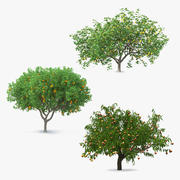 Fruit Trees Collection 3d model