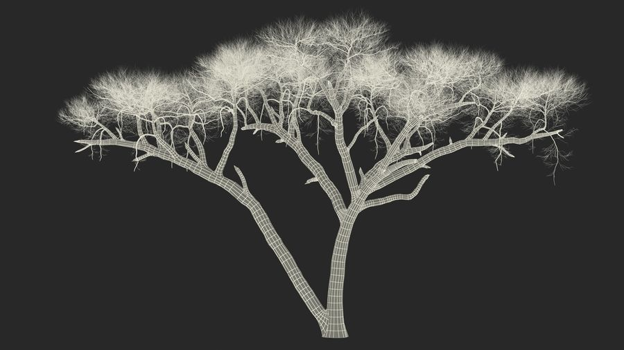 Winter Trees Collection 5 royalty-free 3d model - Preview no. 59