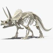 Triceratops Horridus Skeleton Rigged for Cinema 4D 3d model