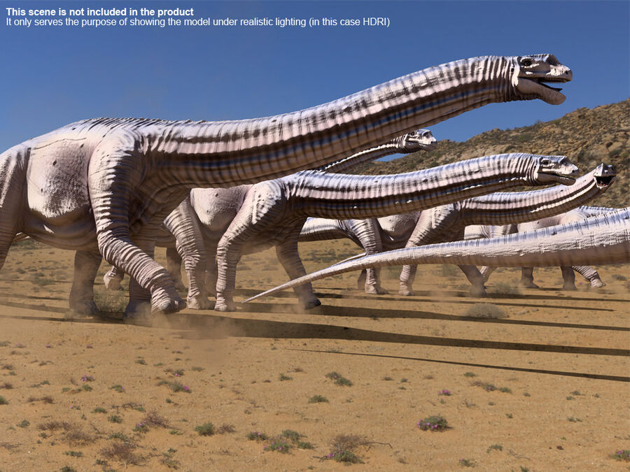 Argentinosaurus Rigged royalty-free 3d model - Preview no. 16