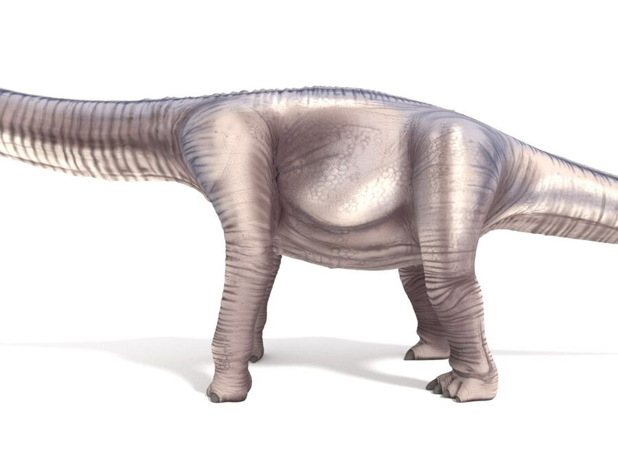 Argentinosaurus Rigged royalty-free 3d model - Preview no. 13