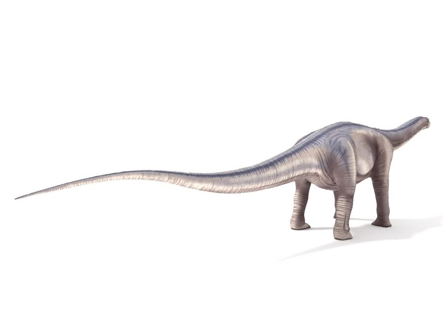 Argentinosaurus Rigged royalty-free 3d model - Preview no. 6