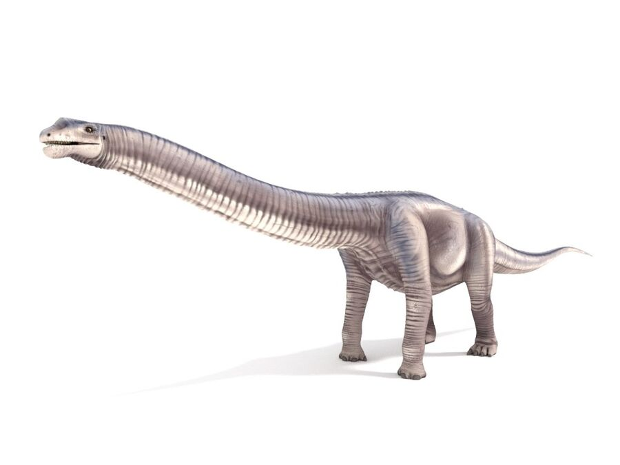 Argentinosaurus Rigged royalty-free 3d model - Preview no. 4