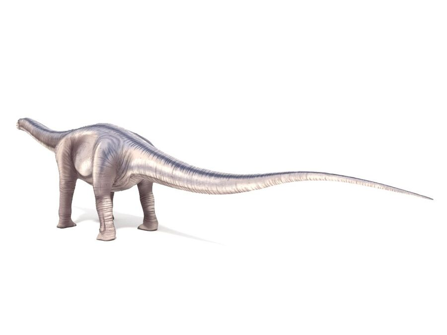 Argentinosaurus Rigged royalty-free 3d model - Preview no. 5