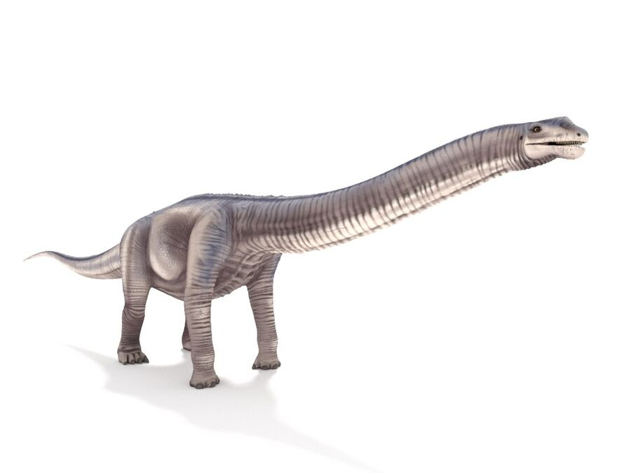 Argentinosaurus Rigged royalty-free 3d model - Preview no. 7